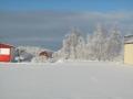 zima2008_008