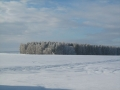 zima2008_013